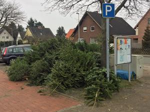 web_weihnachtsbaum_weg