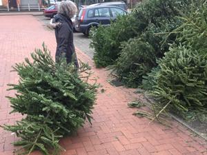 web_weihnachtsbaum_weg2